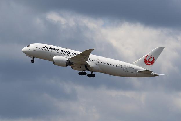Boeing 787 JA849J JAL takeoff