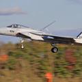 F-15J 8934 201sq landing