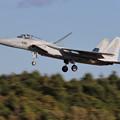 F-15J 8939 201sq landing