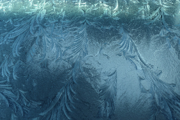 晩秋の朝に窓霜
