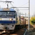 1072レ【EF210-309牽引】