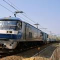 Photos: 1050レ【EF210-115牽引】