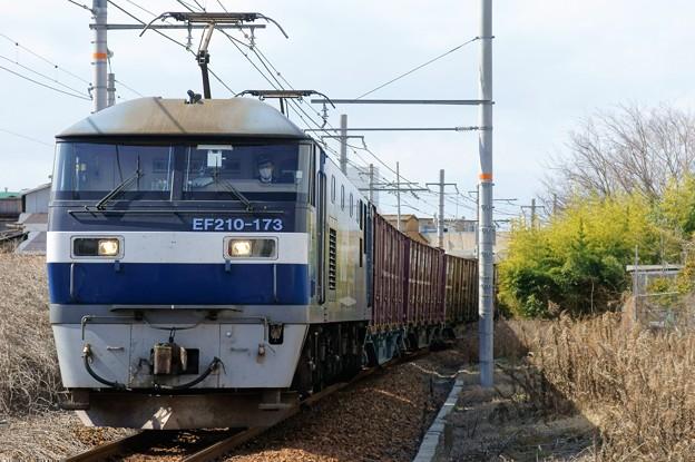 68レ【EF210-173牽引】
