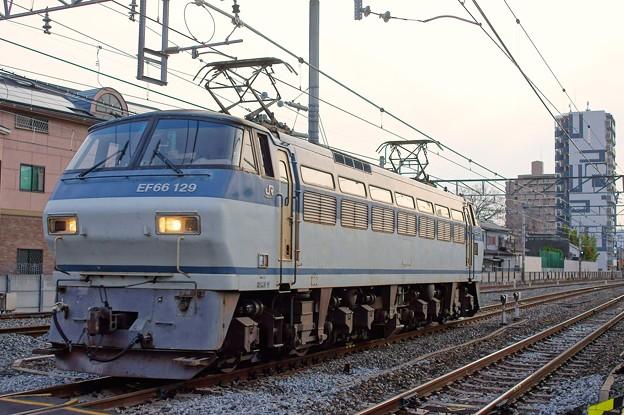 単1780【EF66 129】