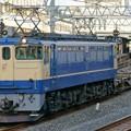 配1792レ【EF65 2101牽引】