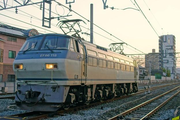 単1780【EF66 118】