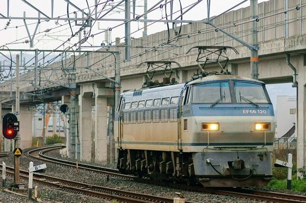 単1780【EF66 120】