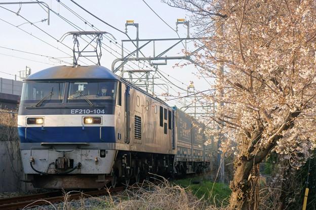 臨8056レ【EF210-104牽引】