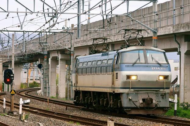 単1780【EF66 113】