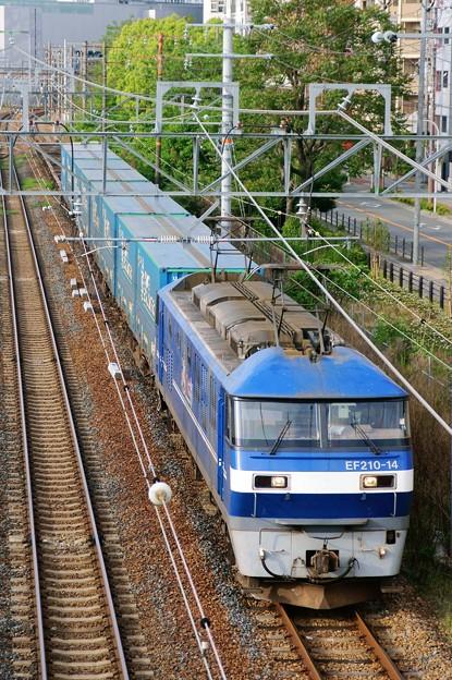 臨8056レ【EF210-14牽引】