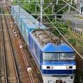 Photos: 臨8056レ【EF210-14牽引】