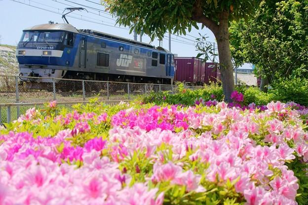Photos: 5074レ【EF210-155牽引】