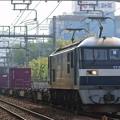Photos: 5067レ【EF210-167牽引】