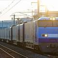 51レ(SRC)【Mc 250-4牽引】