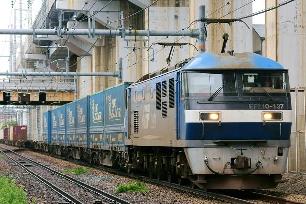 臨8056レ【EF210-137牽引】