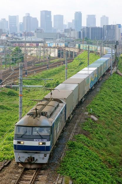 1051レ【EF210-125牽引】