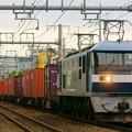 臨8053レ【EF210-18牽引】