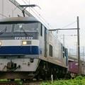 69レ【EF210-172牽引】