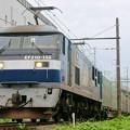 55レ【EF210-155牽引】