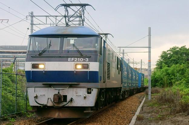 臨8056レ【EF210-3牽引】