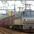 Photos: 5067レ【EF66 117牽引】