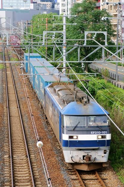 臨8056レ【EF210-101牽引】