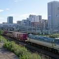Photos: 5067レ【EF66 119牽引】