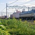 5067レ【EF66 112牽引】