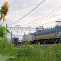 5067レ【EF66 110牽引】