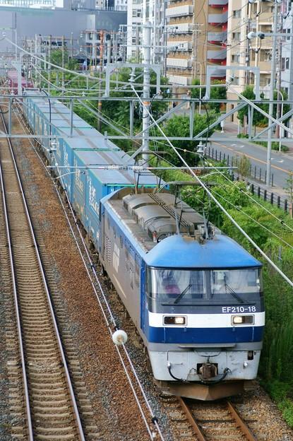 臨8056レ【EF210-18牽引】