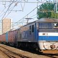 2065レ【EF3210-164牽引】