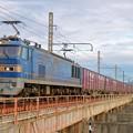 Photos: 4070レ【EF510-515牽引】