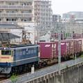 5087レ【EF65 2083牽引】