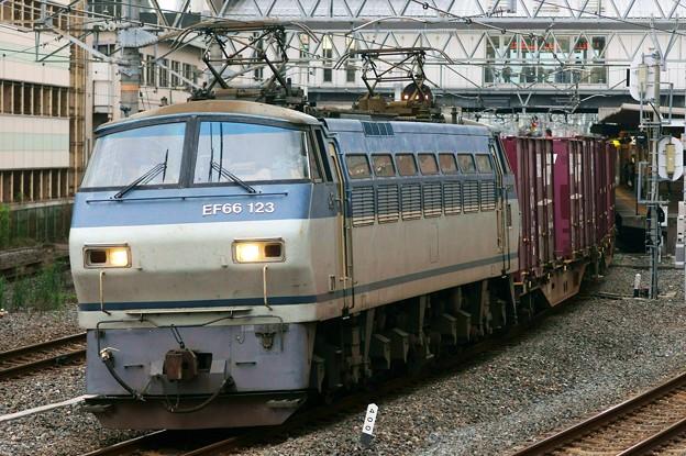 84レ【EF66 123牽引】