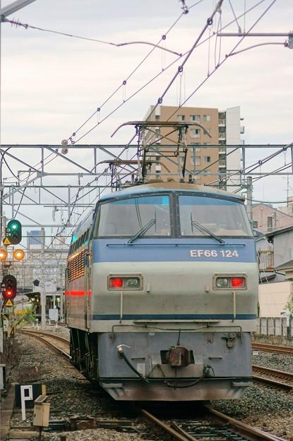 単1780【EF66 124】