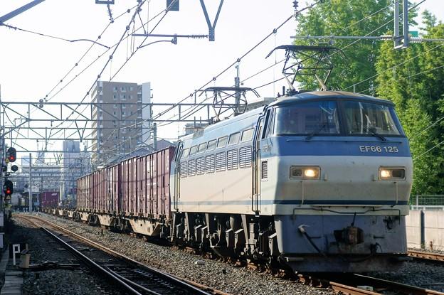 遅83レ【EF66 125牽引】