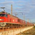 4070レ【EF510-20牽引】