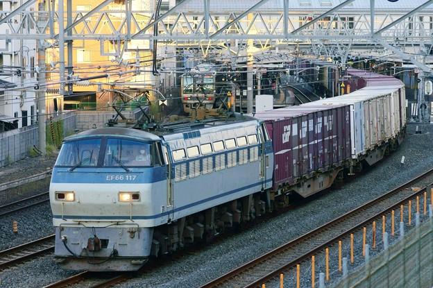 84レ【EF66 117牽引】