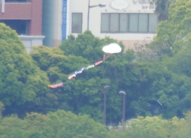 きょうの凧