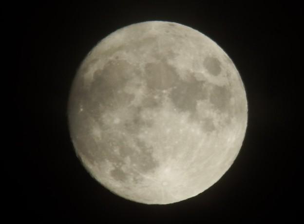 月齢 12.7