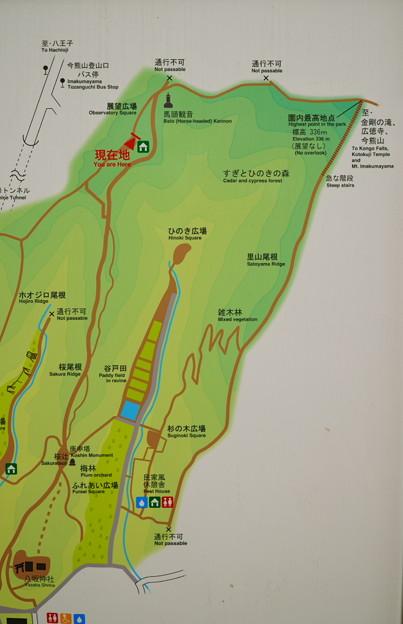 RE春篇 (55)