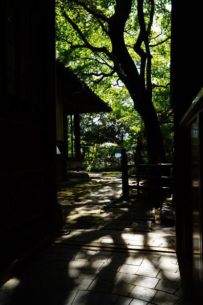 新宿 (56)