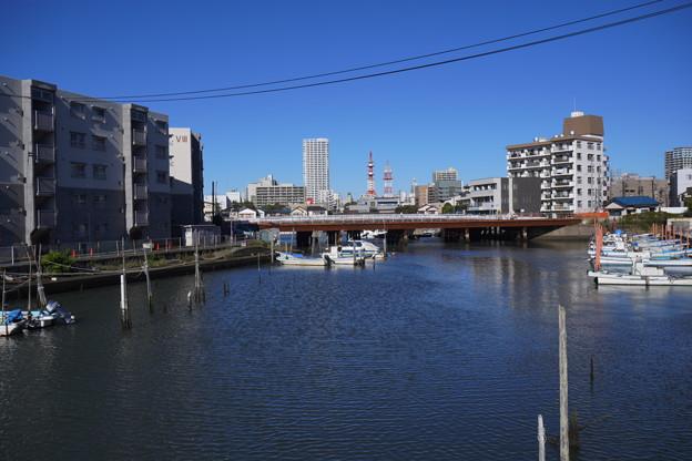 海沿い (4)