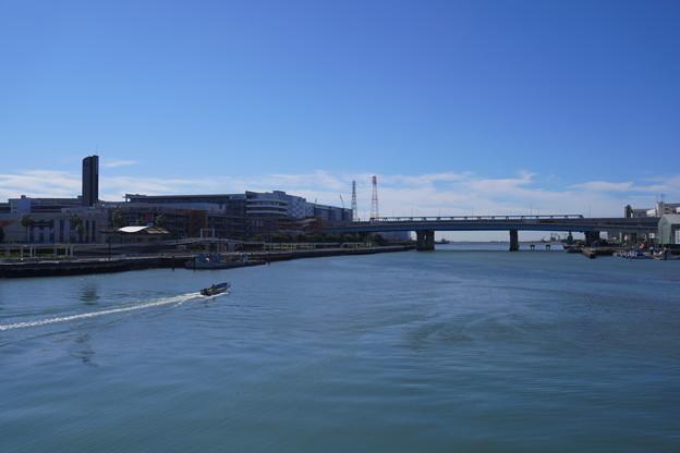 海沿い (11)