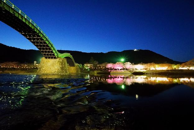 錦帯橋の夜桜
