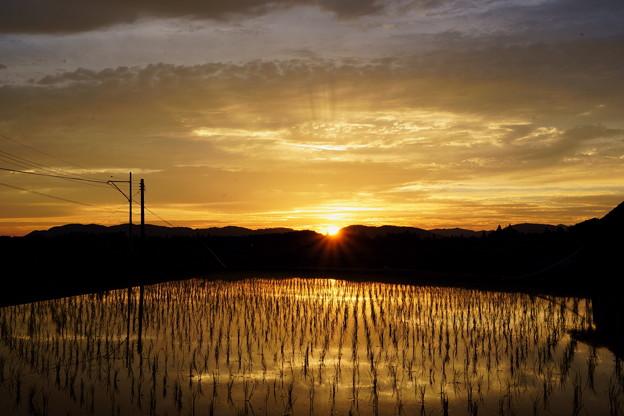 田んぼの彼方に陽が沈む