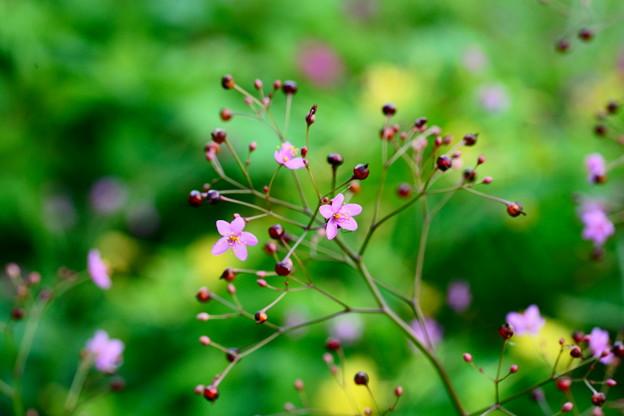 花も実もある