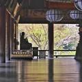 Photos: 長谷寺 本堂