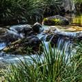 Photos: 庭園を流れる