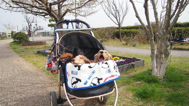 磯子海の見える公園